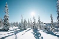 Vinterlandskap i Sälenfjällen.