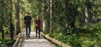 Man och kvinna vandrar på bred spång i skogslandskap,