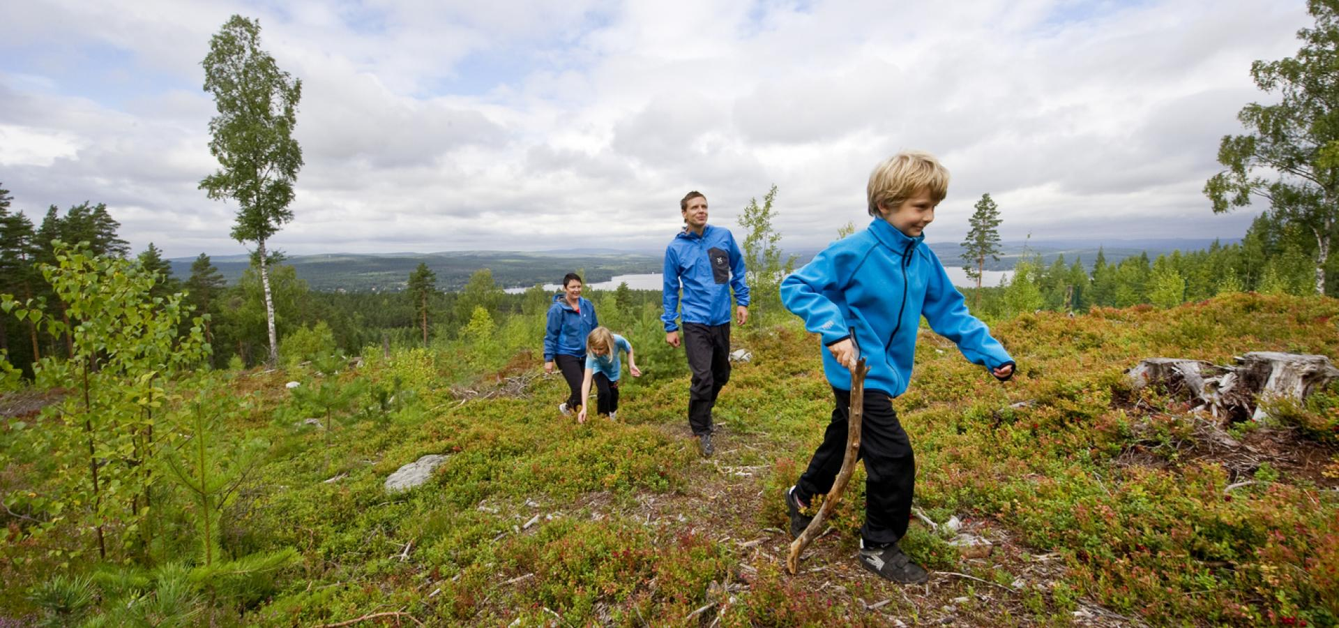 Barnvänlig vandring i Dalarna | Visit Dalarna