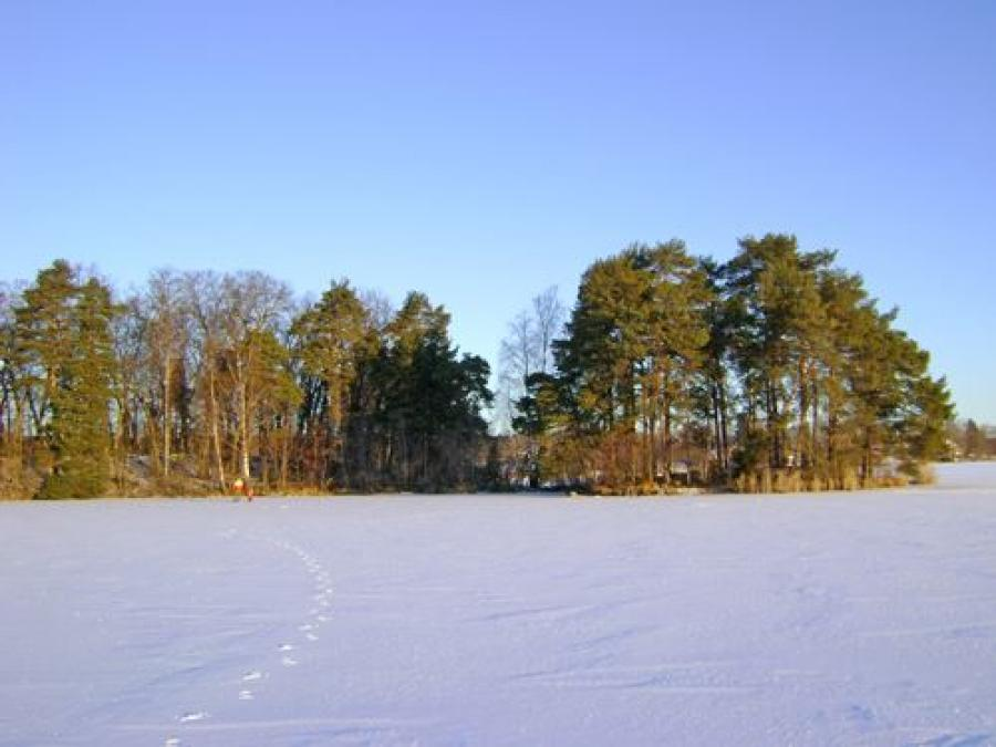 The island Lindön in winter view.