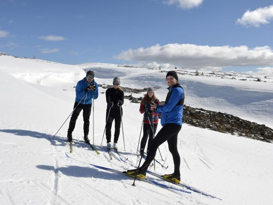Four cross-country skiers in the mountains.
