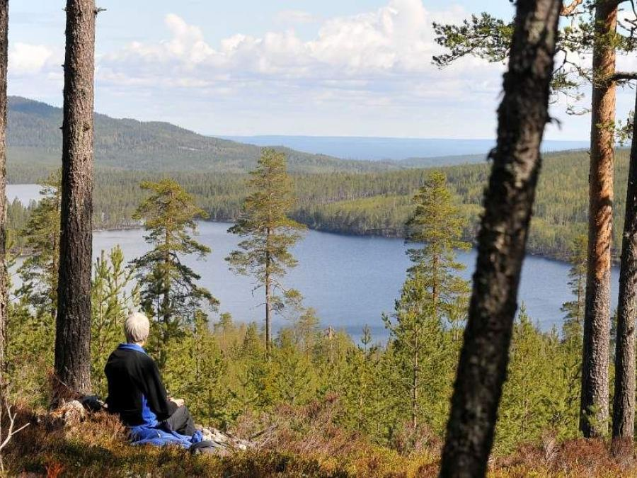 A person sits in the forest and enjoys beautiful views of a lake.