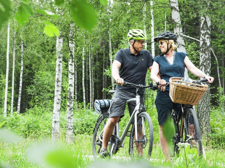 2 people who stopped with the bikes in a birch forest.