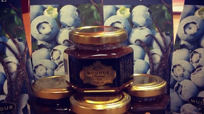 chokladprovning dalarna